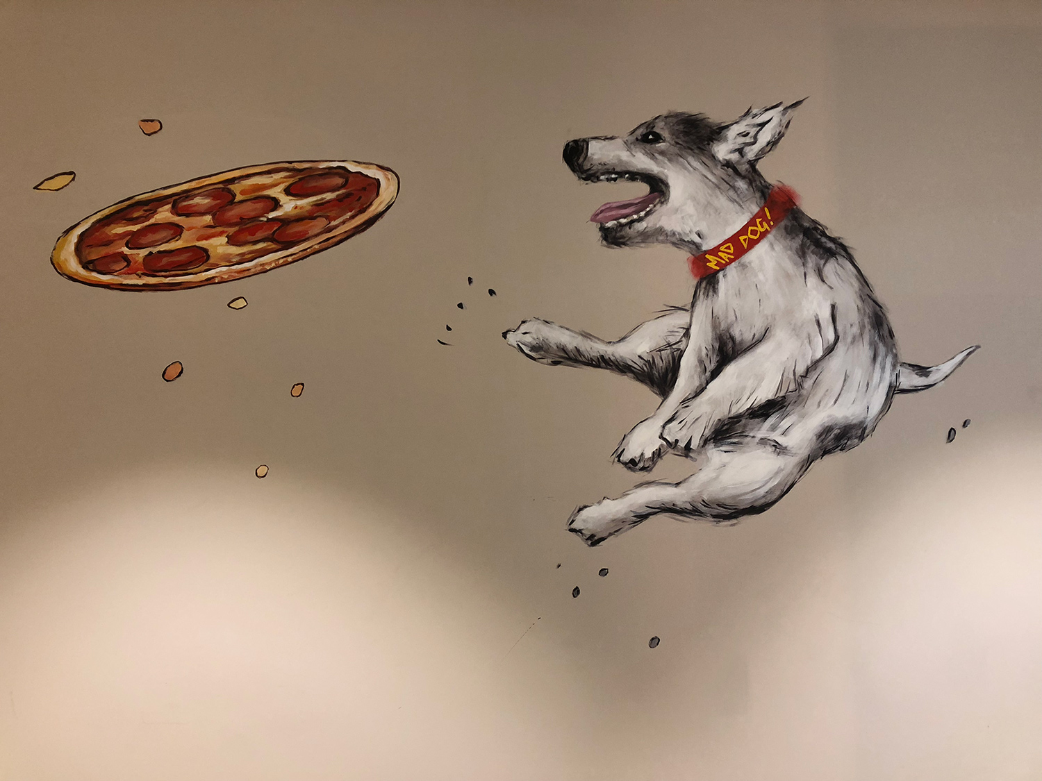 Mural of a dog jumping to catch a pizza on a white wall, in MOD Pizza, Leicester by SAINT Design.